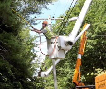 Lineman trimming a tree near a power pole.